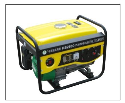 HS2600汽油雷电竞app